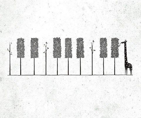 Piyano Piyano Bacaksız 1